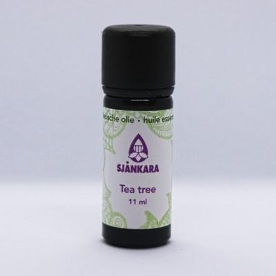 Tea Tree 11 ml Bio (Melaleuca alternifolia)