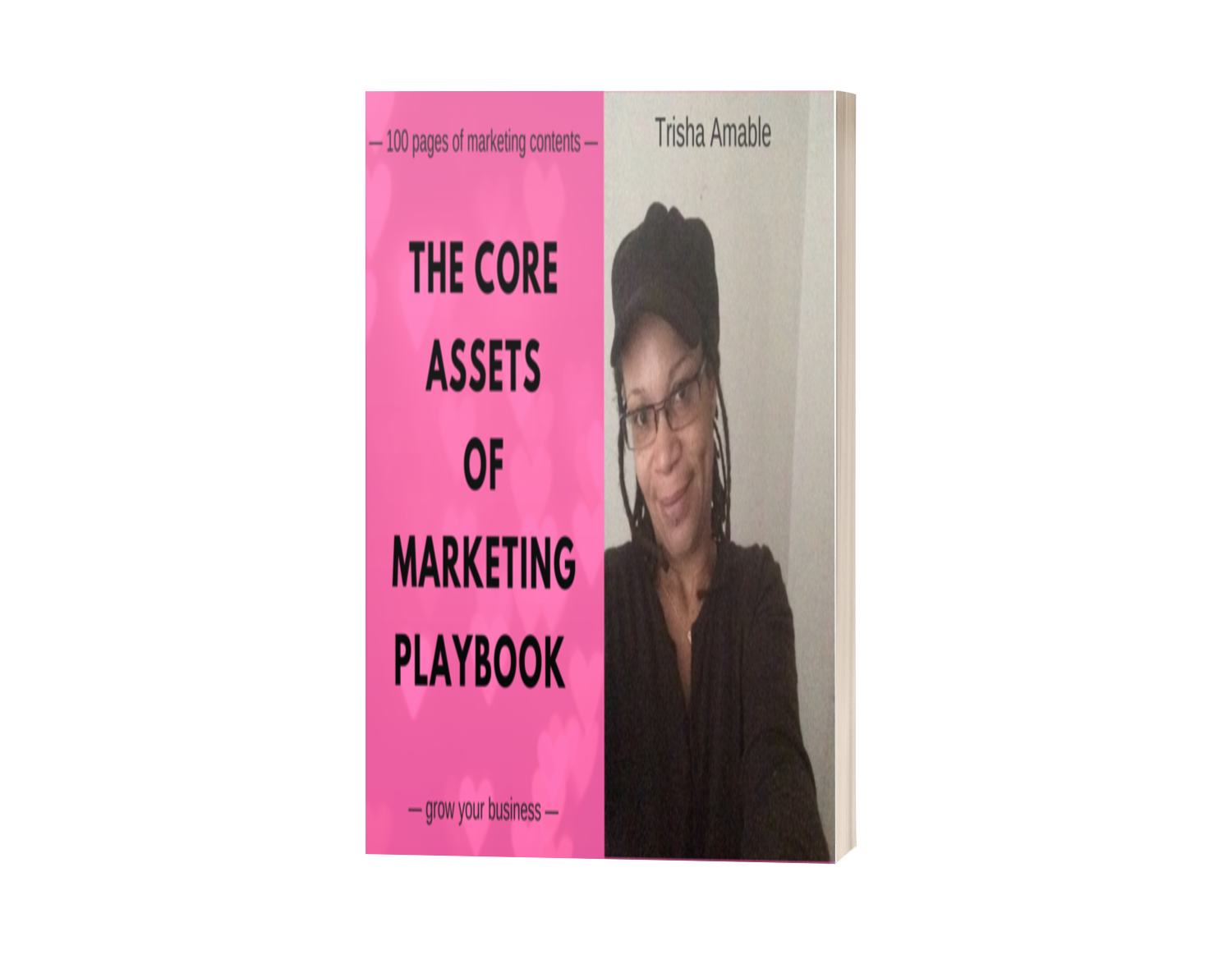 The Core Assets of Marketing Revealed Playbook - with its attached dual Implementation support system The Cellar