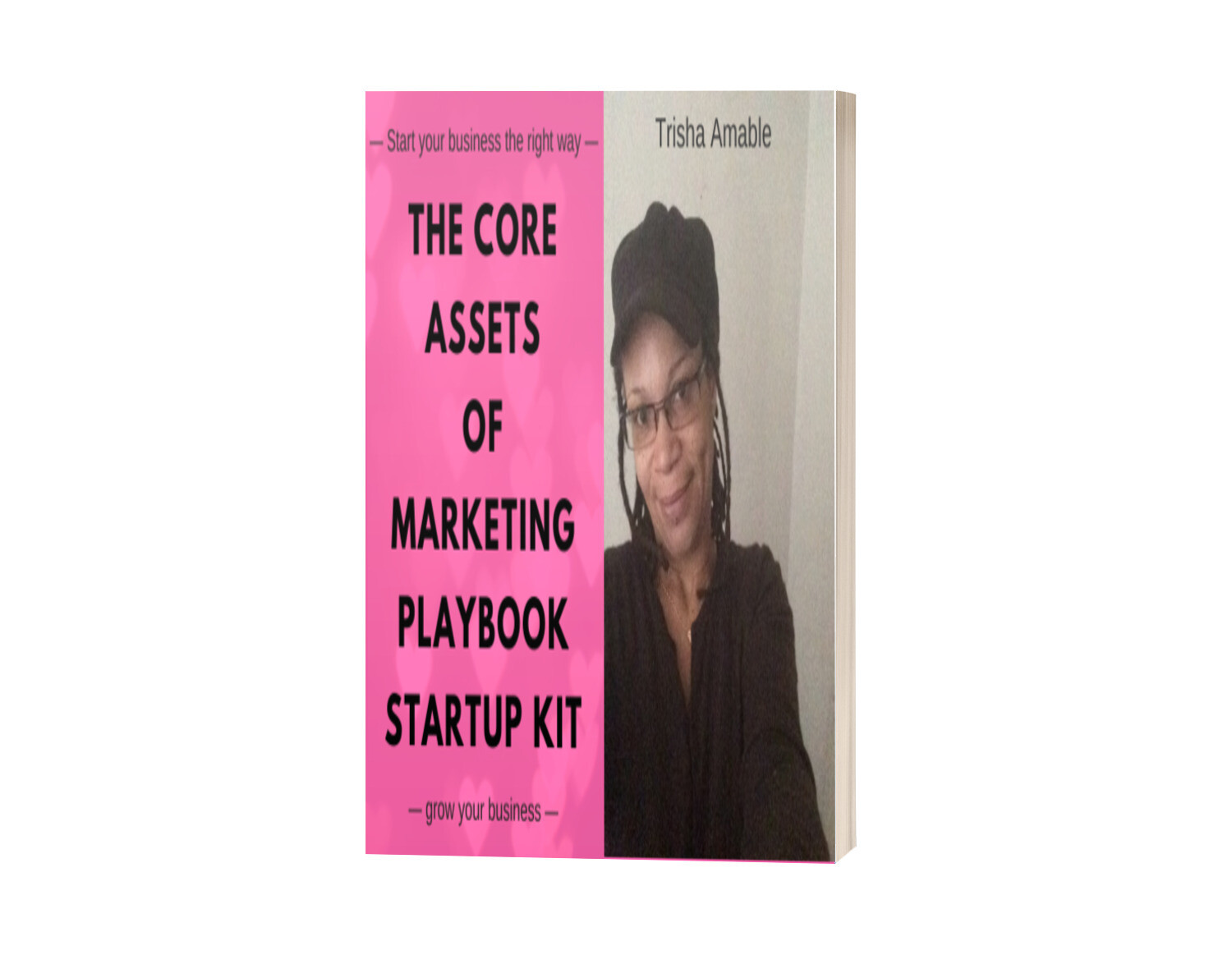 The Core Assets of Marketing Startup Kit - Playbook