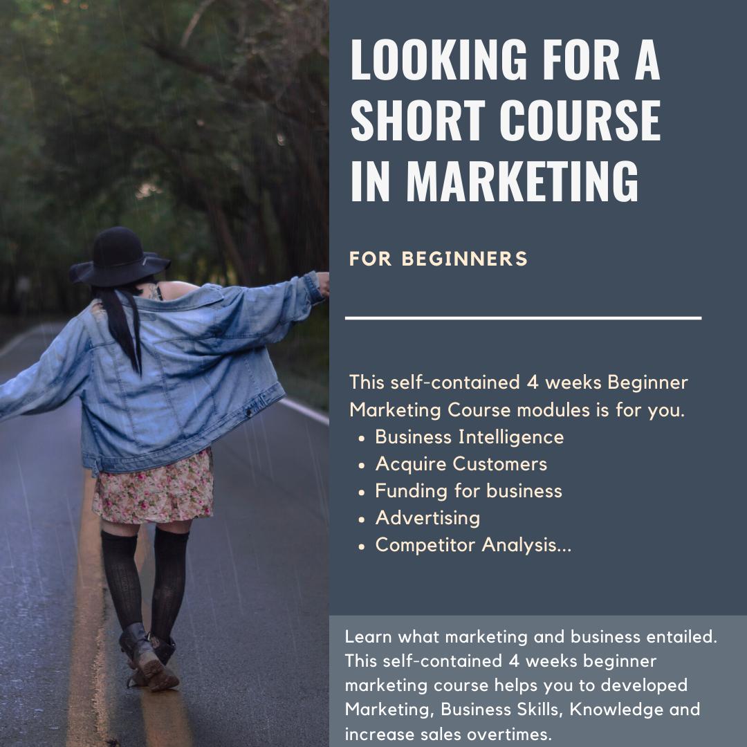 Beginner Marketing Course