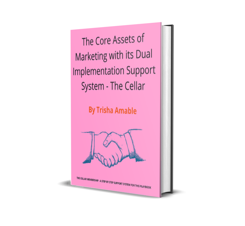 The Core Assets of Marketing  with its dual Implementation support system - The Cellar