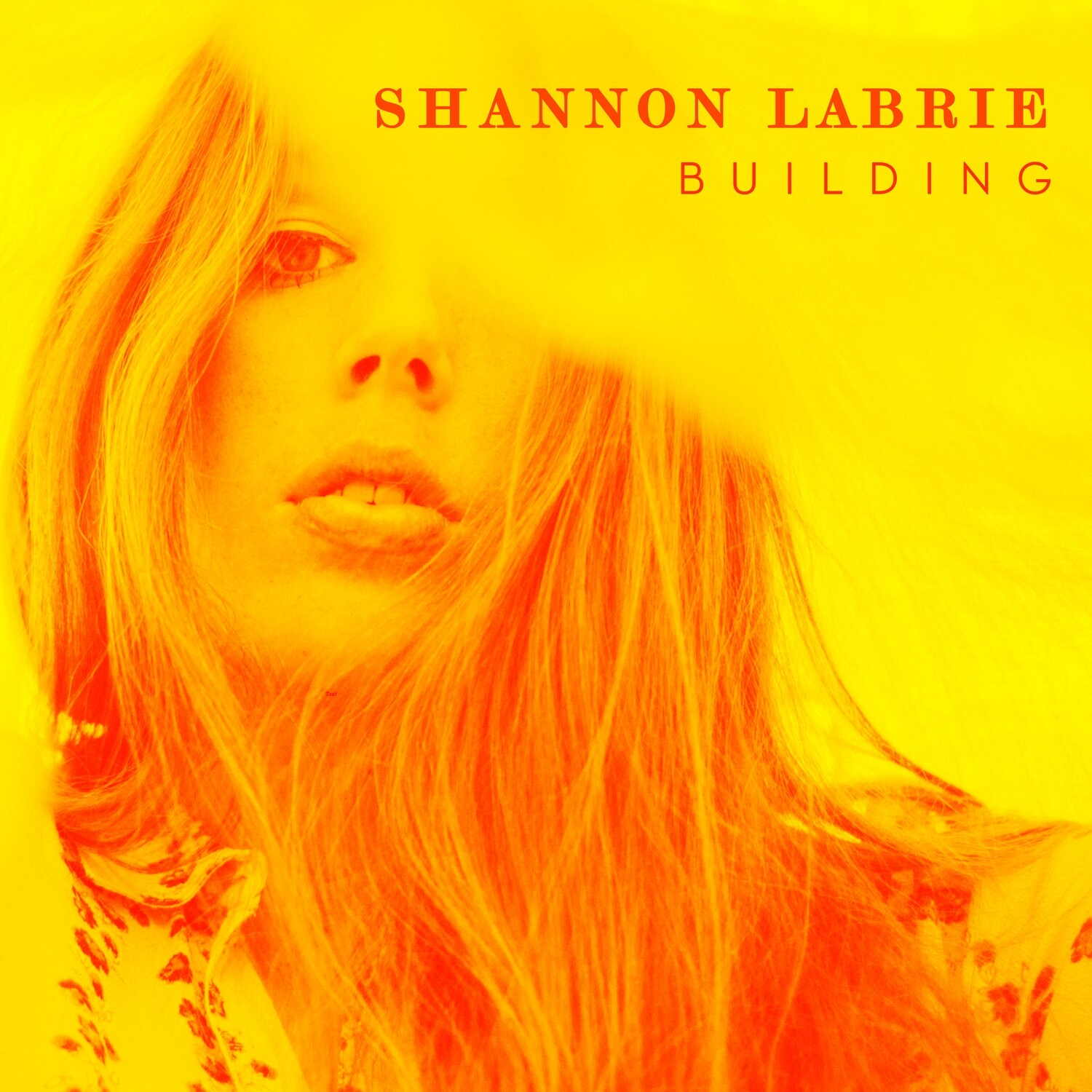(CD) Building - Shannon LaBrie (Signed) (U.S. Only)