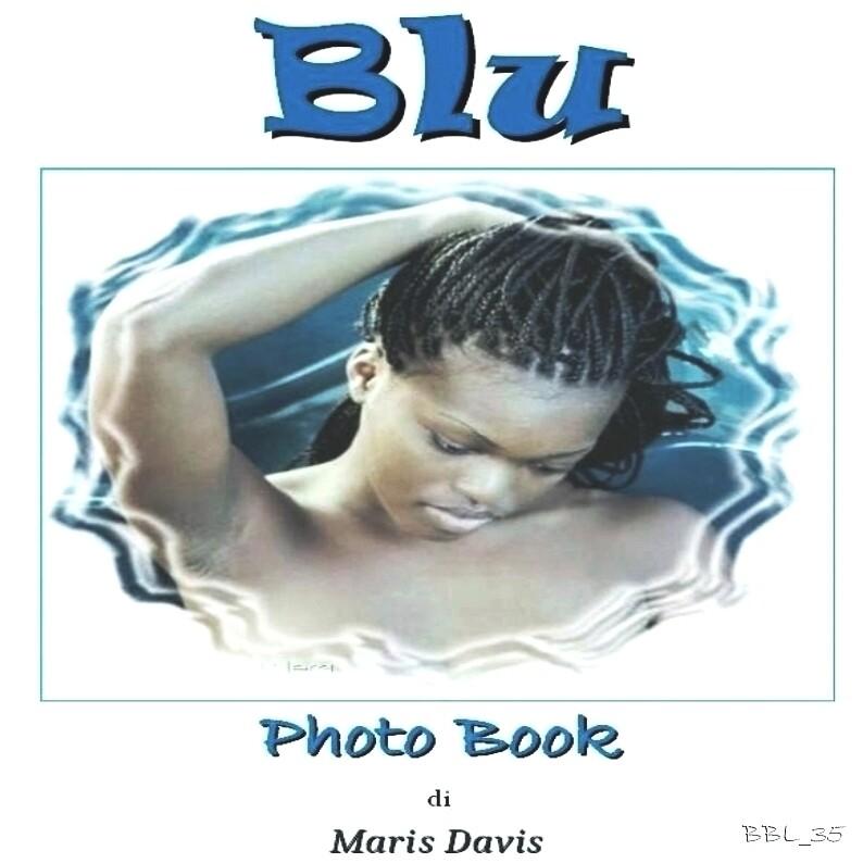 Blu Book (pdf)