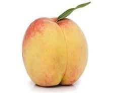 June Gold peach - FRUITING AGE