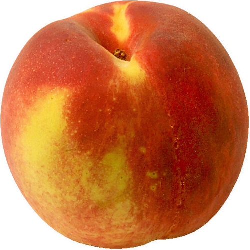 Early Amber Peach