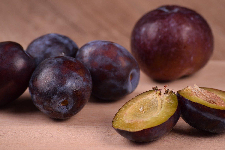 Toka (Bubblegum) plum 3-4'