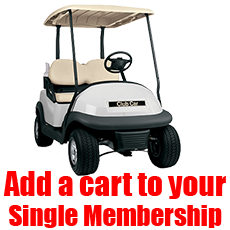 Unlimited Cart for Single Card Holder