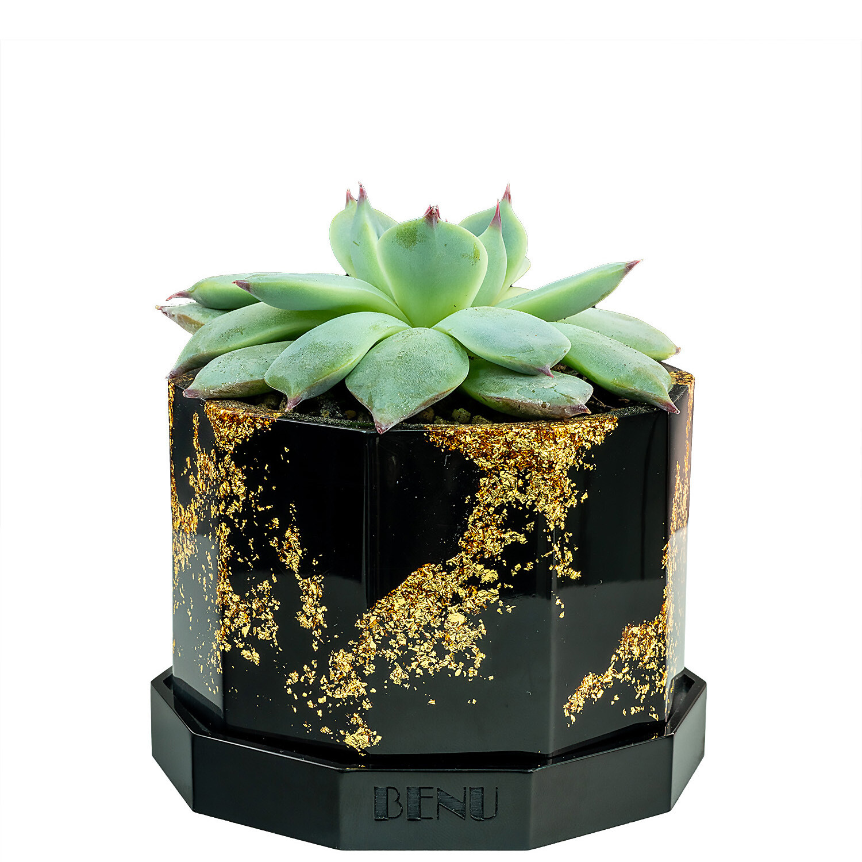 Aztec Gold | Succulent Pot