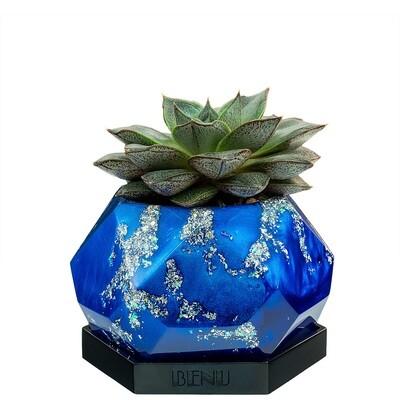 Nautica | Succulent Pot