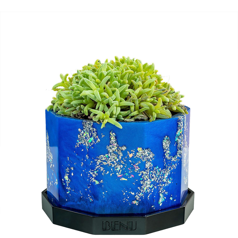 Nautica   Succulent Pot
