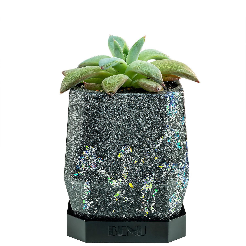 Stardust   Succulent Pot