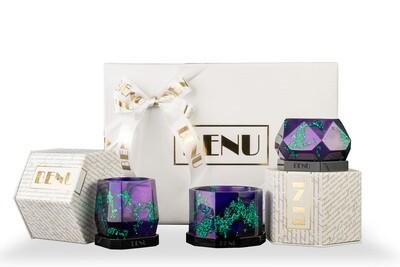 Succulent Pots Gift Set