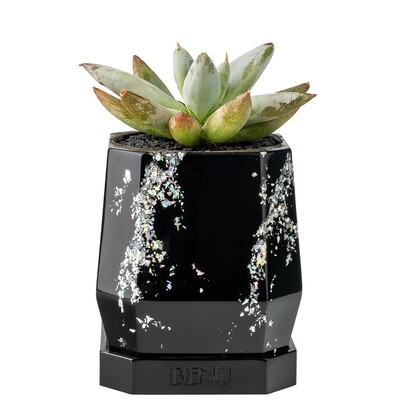 Silver Storm | Succulent Pot