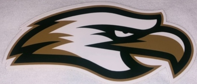20/21 Cy-Falls Car Window Decal - Eagle