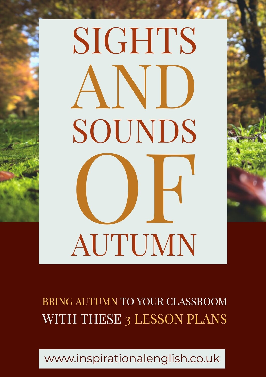 Sights and Sounds of Autumn