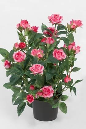 Dekorationsblomster - Rose i potte. H30 cm