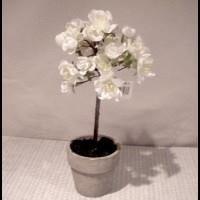 Dekorationstræ - Kirsebær træ mini. H20 cm