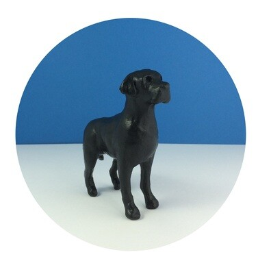 Black Labrador Little Dog Print