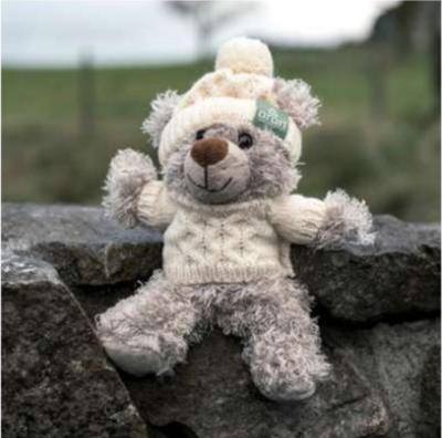 Aran Teddy