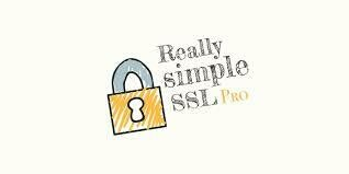 Really Simple SSL: your WordPress website SSL in one click