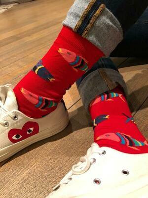 Fish - Man Short Socks