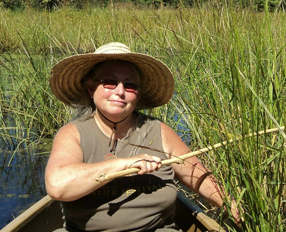 R1934 Linda Conroy - Herbs and Fermentation for Digestive Health