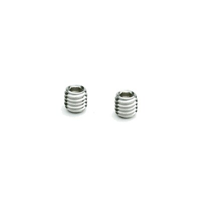 Screw m6 (2pcs)