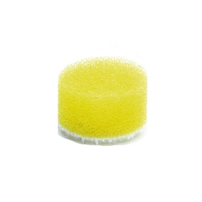 15mm Foam Polishing Pad