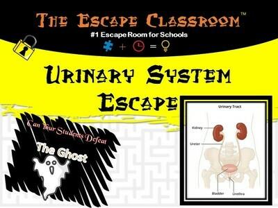 Anatomy: Urinary System Escape (School License)