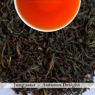 A DELIGHTFUL AND BOLD AUTUMNAL JUNGPANA   -  Darjeeling Autumn Flush Tea     (100gm / 3.5oz)