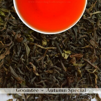 GOOMTEE AUTUMNAL SPECIAL - Darjeeling Autumn Flush 2019  (100gm / 3.5oz)