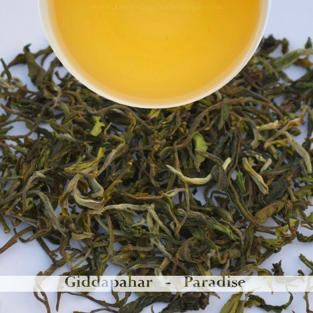 A PARADISE FROM GIDDAPAHAR  - Darjeeling 1st flush 2020  - 50gm (1.76oz)