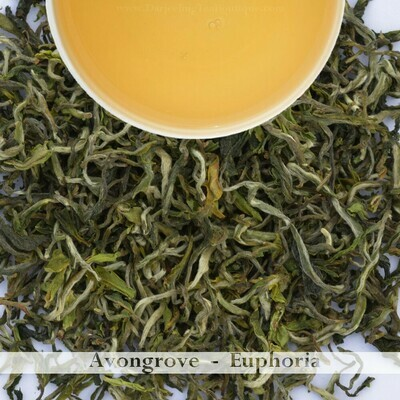 Sample | AVONGROVE EUPHORIA  - Darjeeling 1st flush 2020  - 10gm (0.35oz)