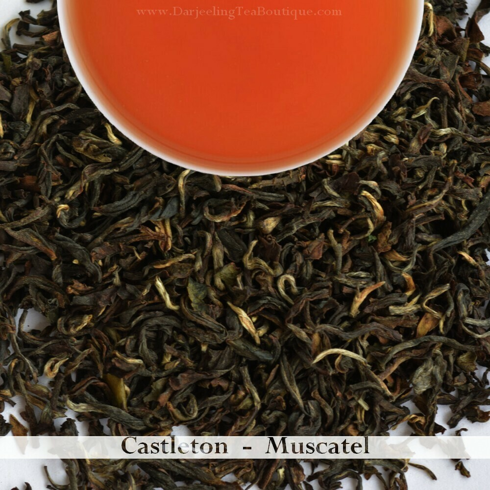 CASTLETON MUSCATEL - Darjeeling 2nd Flush 2020 (100gm / 3.5oz)