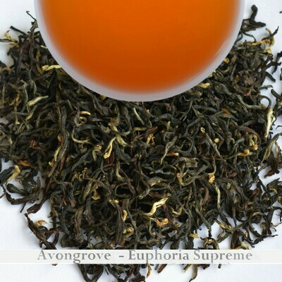 WHOLESALE PACK | AVONGROVE EUPHORIA - Darjeeling 2nd Flush 2020 750gm