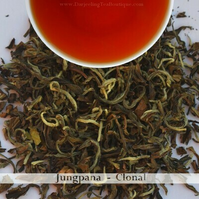 FRAGRANT JUNGPANA CLONAL   - Darjeeling Autumn Flush Tea 2020  (100gm / 3.5oz)