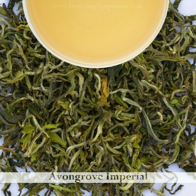 Sample | AVONGROVE IMPERIAL  - Darjeeling 1st flush 2021- 10gm (0.35oz)