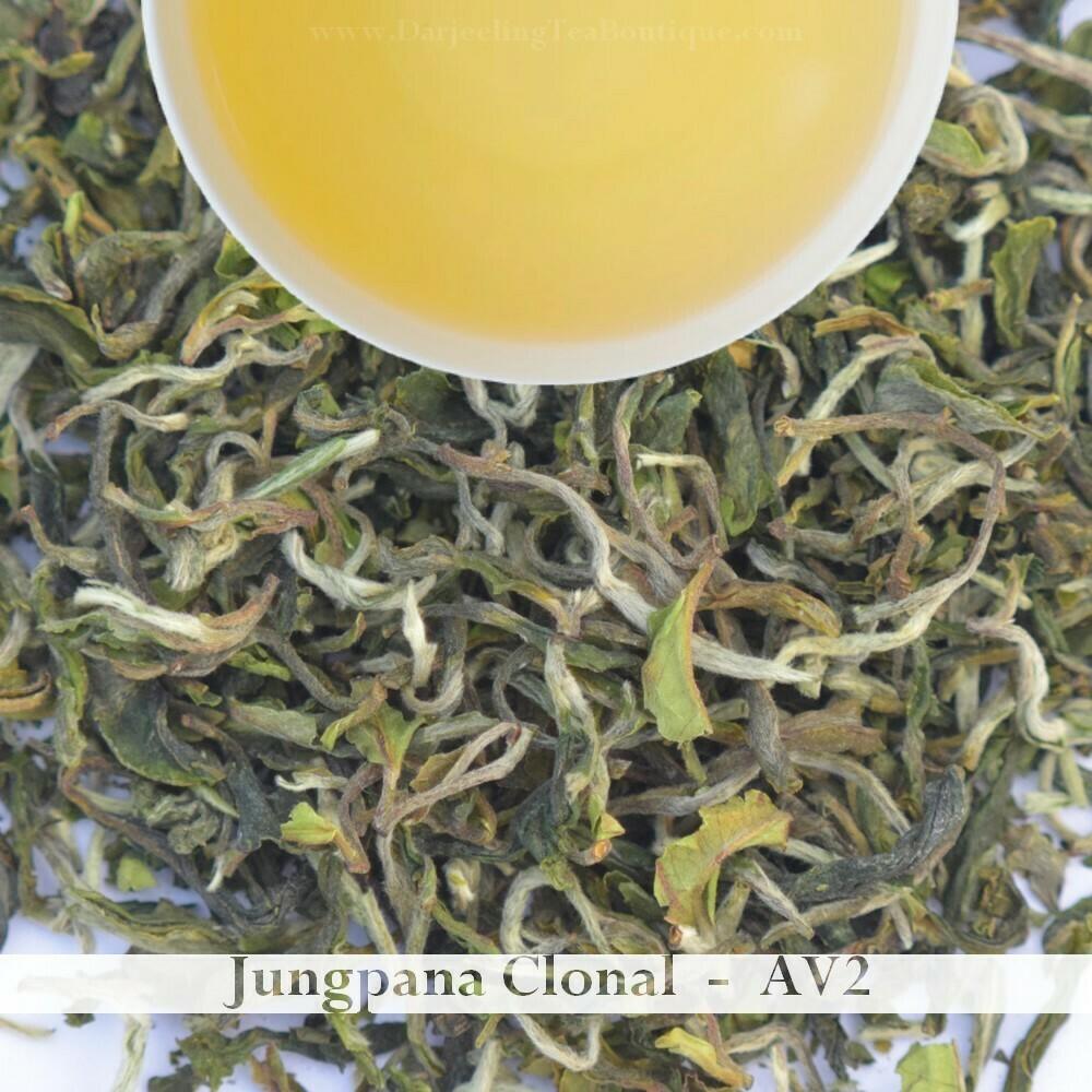 JUNGPANA AV2 CLONAL - Darjeeling 1st flush 2021  - 50gm (1.76oz)