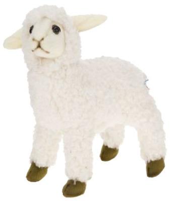 White Sheep Kid By Hansa