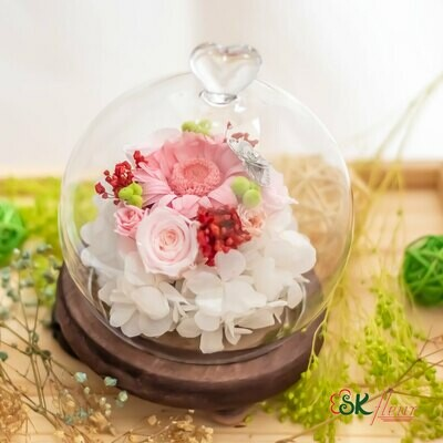 GREENHOUSE (16cm tall) DOME SHAPED GLASS WITH LED LIGHT - PRESERVED BABY PINK GERBERA