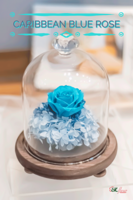 GREENHOUSE GLASS WITH LED LIGHT (18cm) - CARIBBEAN BLUE ROSE