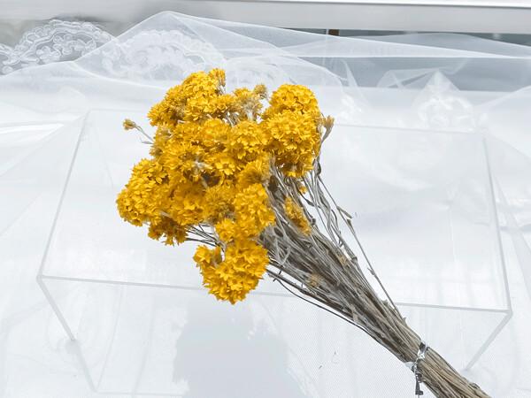 DRIED SANFORDII FLOWER