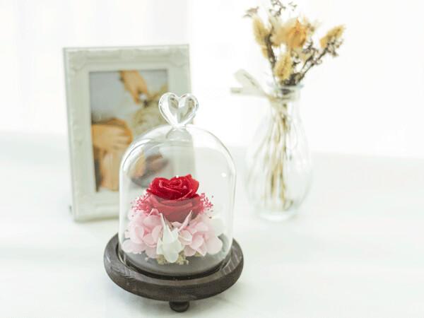 CYLINDER GLASS - SWEET SHINING SMILE