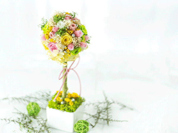 TOPIARY - SPRING 2021 COLLECTION