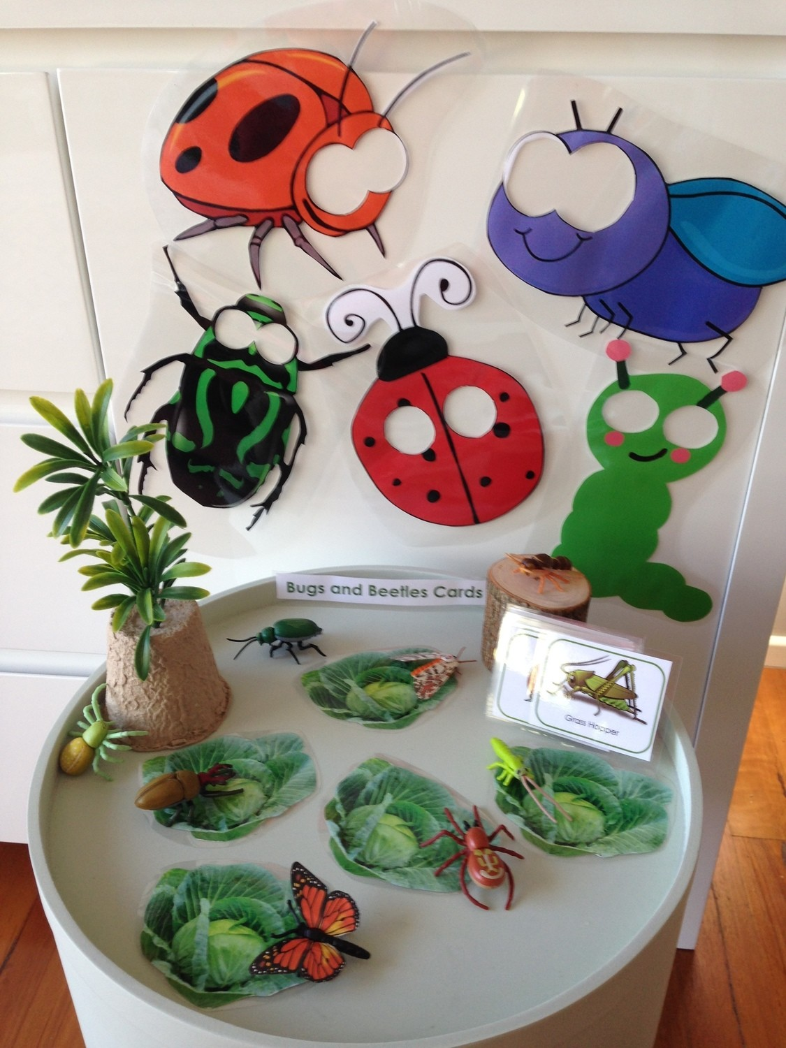 SONGS AND PROPS - Bugs and Beetles in my Garden Song