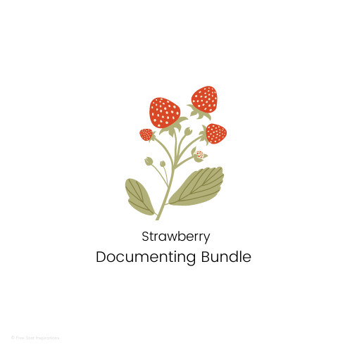 DOCUMENTING – Documenting Template Bundle - Strawberry