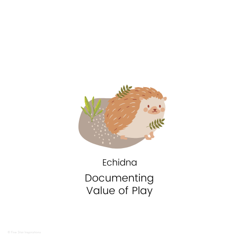 DOCUMENTING - Value of Play - Cute Echidna