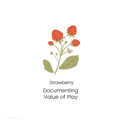 DOCUMENTING - Value of Play - Strawberry