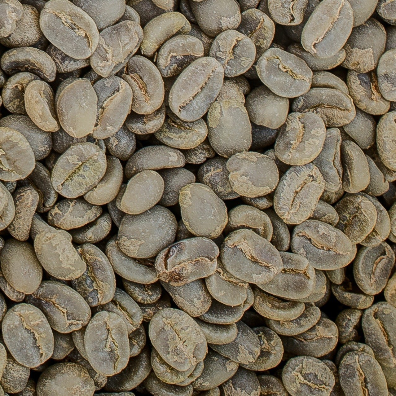 Unroasted Colombian