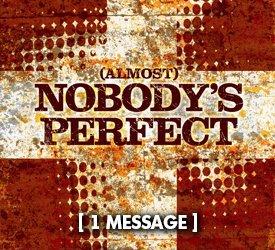 Almost Nobody's Perfect